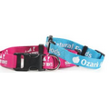 "Flat Polyester Dog Collars (3/8""x12"")"