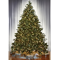 The World's Best Prelit Noble Fir w/LED Lights - Slim - 8.5'