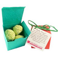Wildflower Seed Bombs in a Seeded Gift Box (5 per box)