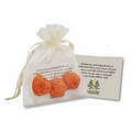 Wildflower Scented Seed Bombs in Natural Cotton Bag (3 Pack)