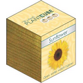 Plant Cube- Sunflower