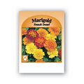 Promotional Custom Seed Packet- Marigold